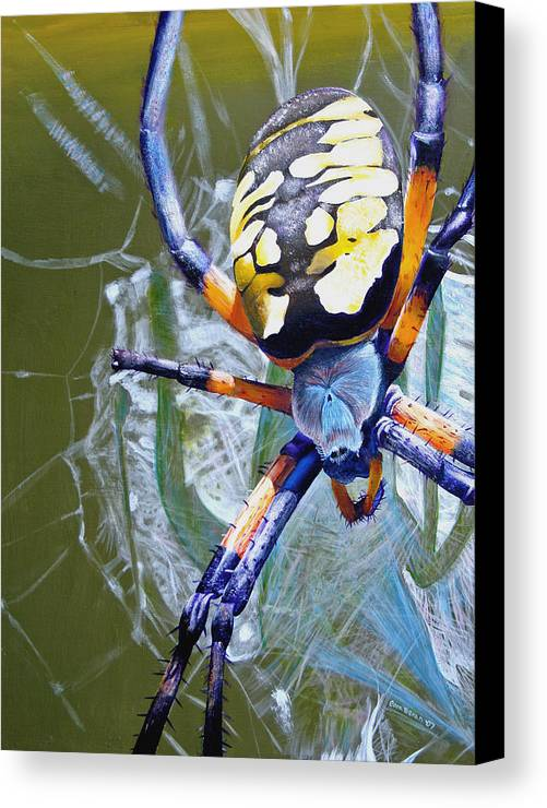 Spider Canvas Print featuring the painting The Beauty Of Writing by Cara Bevan