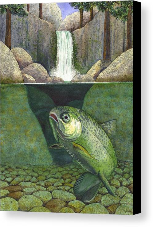 Trout Canvas Print featuring the painting Water by Catherine G McElroy