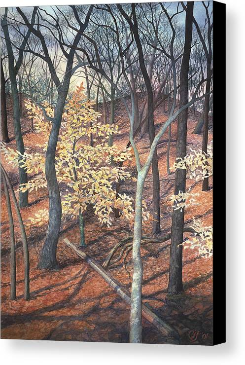 Trees Canvas Print featuring the painting Winter Beech by Craig Gallaway