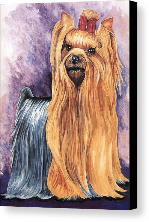 Yorkshire Terrier Canvas Print featuring the painting Yorkshire Terrier by Kathleen Sepulveda