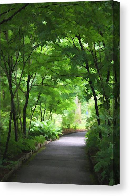 Nature Canvas Print featuring the photograph Pathway by Joyce Baldassarre
