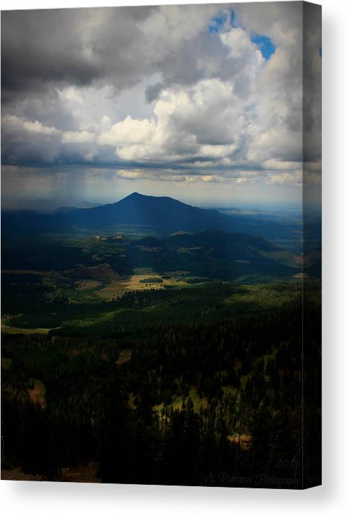 Flagstaff Canvas Print featuring the photograph Sunlight On The Valley Floor by Aaron Burrows