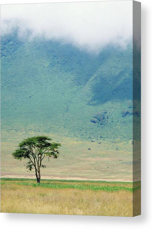 Vertical Canvas Print featuring the photograph Ngorongoro Crater by Axiom Photographic