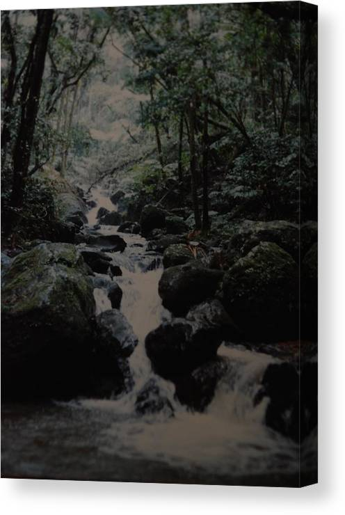Water Canvas Print featuring the photograph Puerto Rico Water by Rob Hans