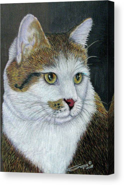 Fuqua - Artwork Canvas Print featuring the drawing Golden Eyes by Beverly Fuqua