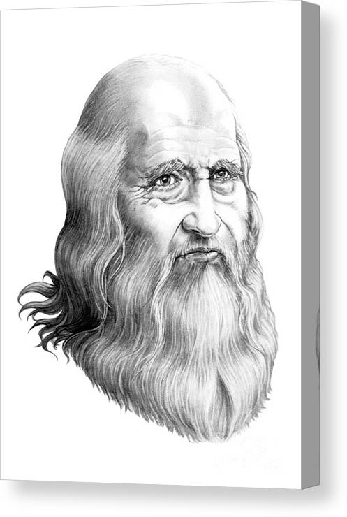 Famous Person Canvas Print featuring the drawing Leonardo Da Vinci by Murphy Elliott