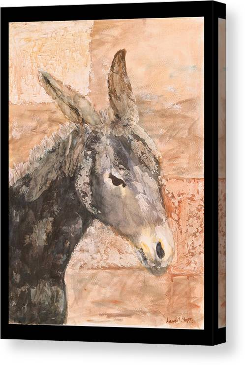 Donkey Canvas Print featuring the painting Moroccan Donkey by Laura Vazquez