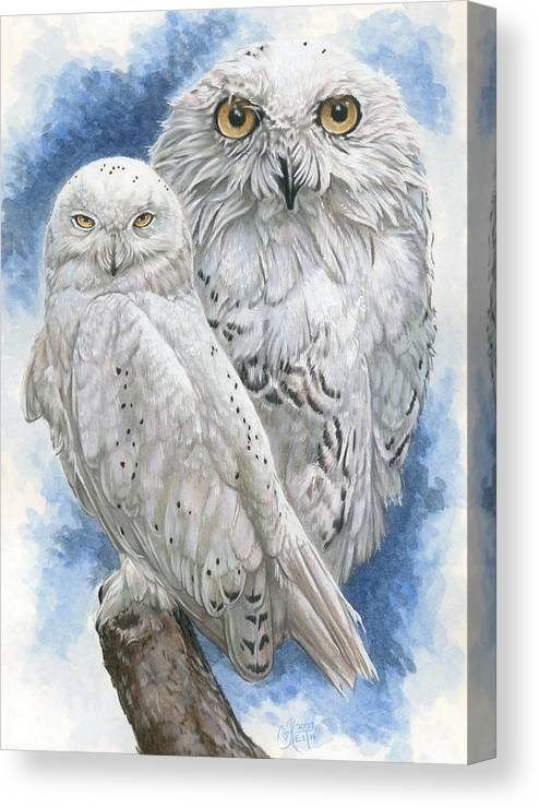 Snowy Owl Canvas Print featuring the mixed media Radiant by Barbara Keith