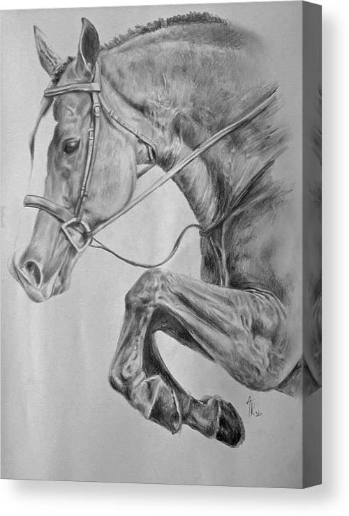 Horse Pencil Drawing Canvas Print / Canvas Art by Arion ...