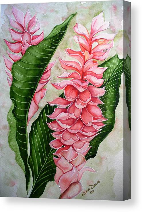 Flower Painting Floral Painting Botanical Painting Ginger Lily Painting Original Watercolor Painting Caribbean Painting Tropical Painting Canvas Print featuring the painting Pink Ginger Lilies by Karin Dawn Kelshall- Best