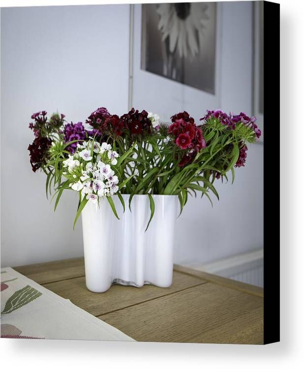 Iittala Vase 7 Flowers Canvas Print Canvas Art By Neville Barber