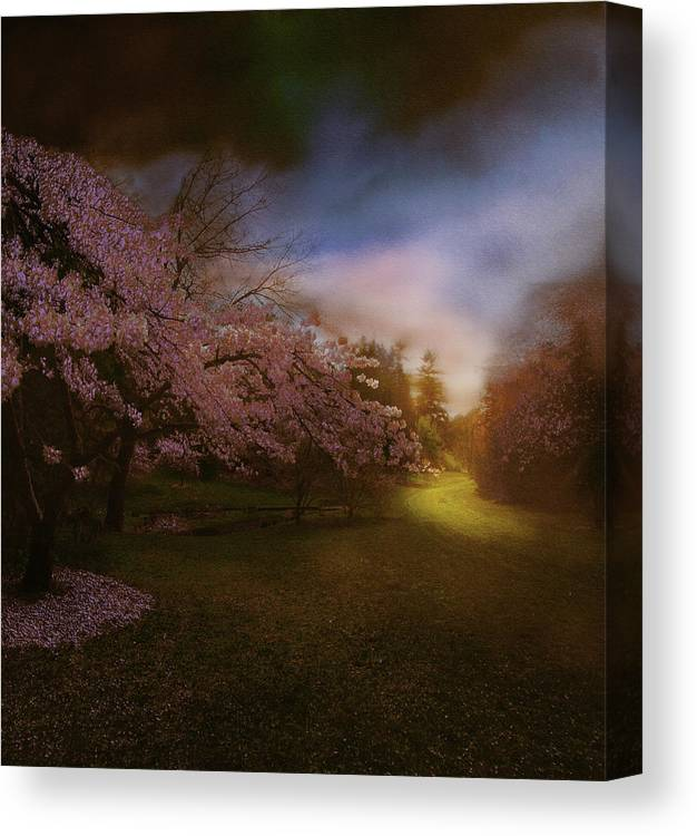 Landscape Canvas Print featuring the photograph Perplexing Illumination by Jeff Burgess
