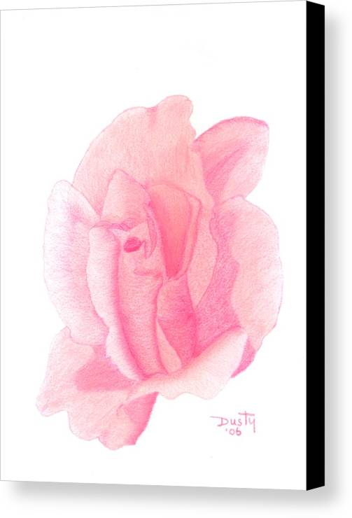 Rose Canvas Print featuring the drawing Strawberry Shortcake by Dusty Reed
