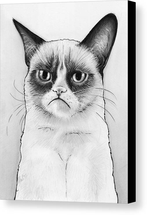Grumpy Cat Canvas Print featuring the drawing Grumpy Cat Portrait by Olga Shvartsur
