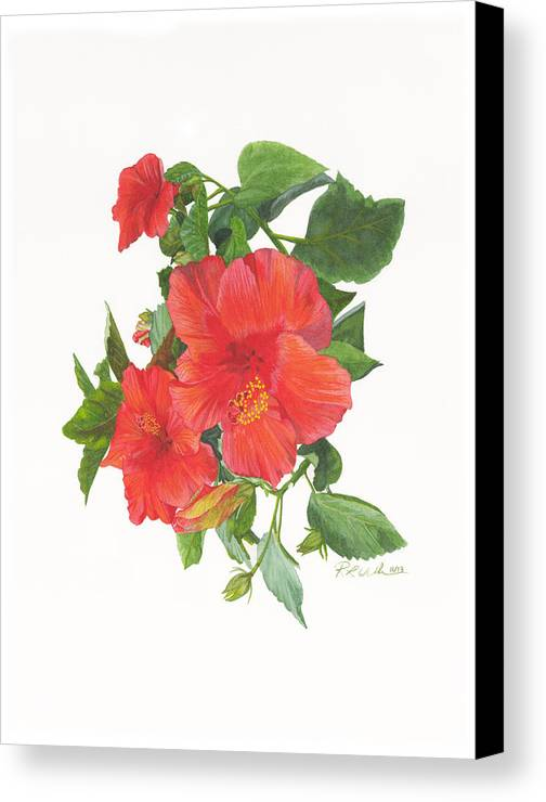Hibiscus Canvas Print featuring the painting Hibiscus 1 by Ronald Wilkie
