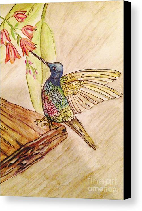 Birds Canvas Print featuring the drawing Hummingbird Love by Deborah Vicino