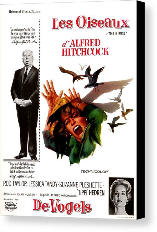 1960s Portraits Canvas Print featuring the photograph The Birds, Aka Alfred Hitchcocks The by Everett