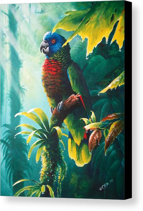 Chris Cox Canvas Print featuring the painting A Shady Spot - St. Lucia Parrot by Christopher Cox