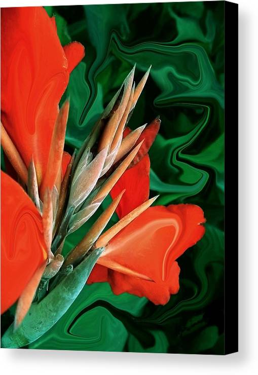 Bird Of Paradise Canvas Print featuring the photograph Bird Of Paradise 5 by Jim Darnall