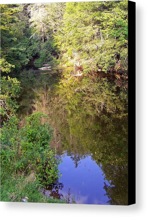 Water Canvas Print featuring the photograph Blue Heart Surprise by Patricia Taylor