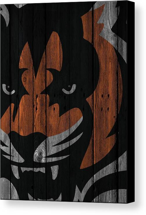 cincinnati bengals wood fence canvas print canvas art by joe hamilton