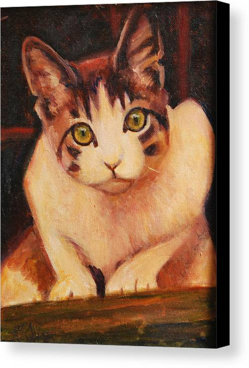 Cat Art Canvas Print featuring the painting Curiosity by Billie Colson