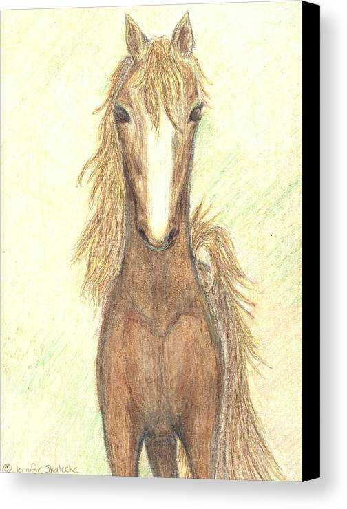Horse Canvas Print featuring the drawing Defiant Freedom by Jennifer Skalecke