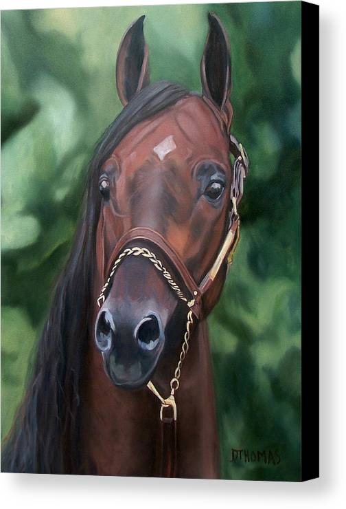 Horse Portrait Canvas Print featuring the painting Dont Worry Saddlebred Sire by Donna Thomas