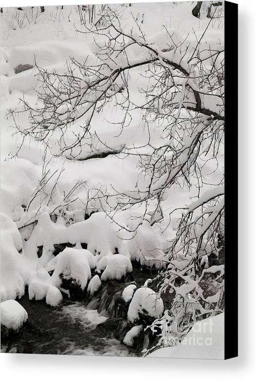 Utah Canvas Print featuring the photograph Lambs Canyon In Winter by Dennis Hammer