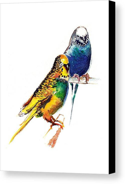 Nature Canvas Print featuring the painting Love Birds by Anil Nene