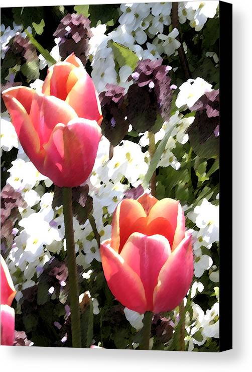 Tulips Canvas Print featuring the digital art Love Tulips by Mary Gaines