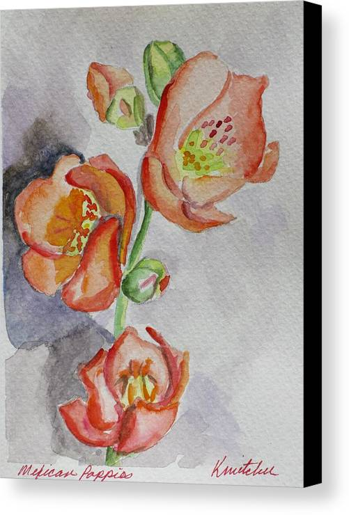 Floral Canvas Print featuring the painting Mexican Poppies by Kathy Mitchell