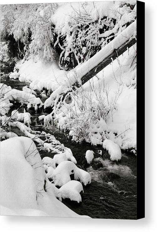 Mill Creek Canvas Print featuring the photograph Mill Creek Canyon In Winter by Dennis Hammer