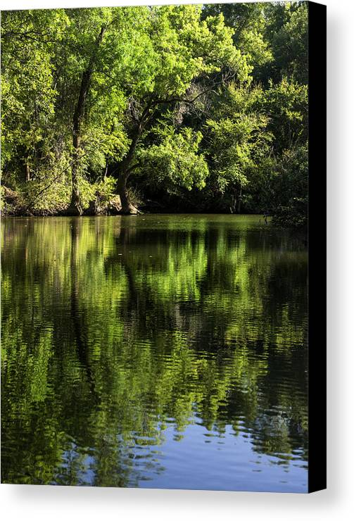 River Canvas Print featuring the photograph River In The Mountain by Radoslav Nedelchev
