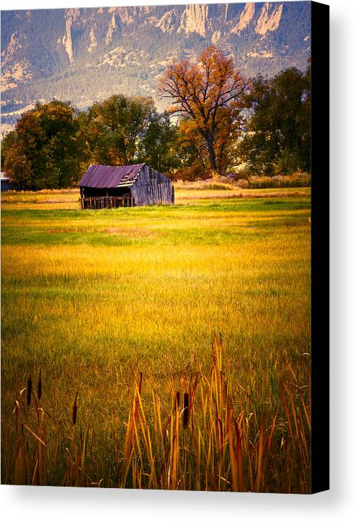Shed Canvas Print featuring the photograph Shed In Sunlight by Marilyn Hunt