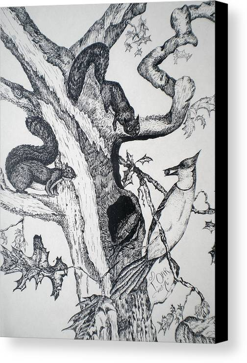 Nature Canvas Print featuring the drawing Squirrels And Bird by Tammera Malicki-Wong