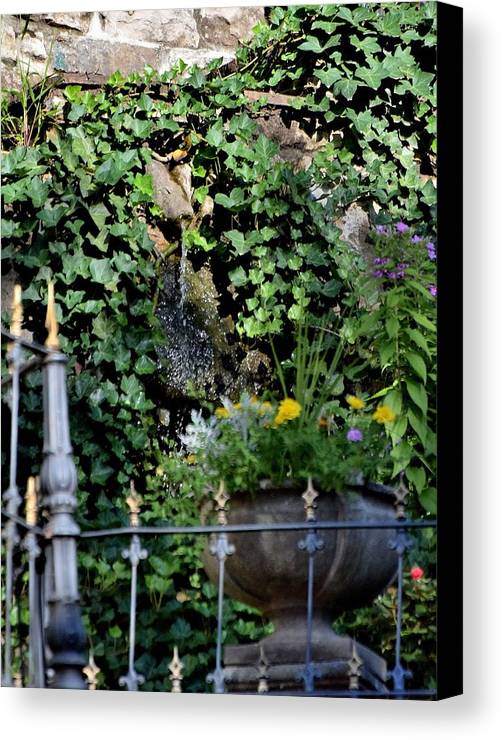 Flowers Canvas Print featuring the photograph Todays Art 1248 by Lawrence Hess