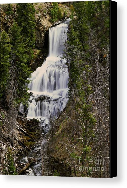 Waterfall Canvas Print featuring the photograph Undine Falls On Lava Creek by Dennis Hammer