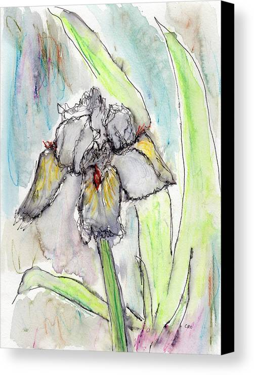 Iris Canvas Print featuring the painting White Iris by Christopher O'Kelley