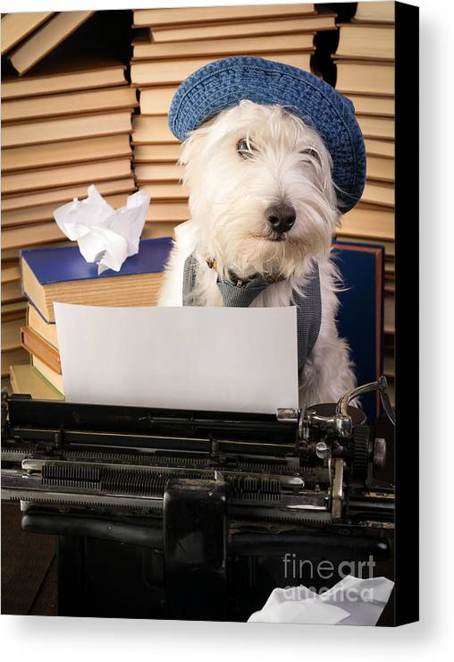 Dog Canvas Print featuring the photograph Writer's Block by Edward Fielding