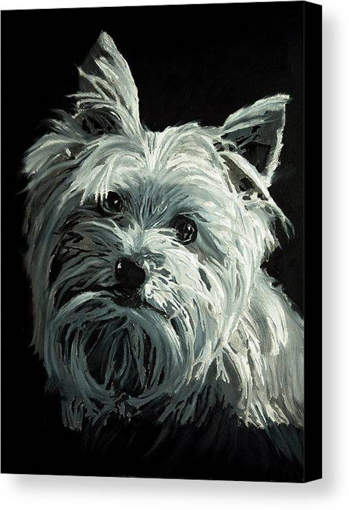 Animals Canvas Print featuring the painting Yorkie by Portraits By NC