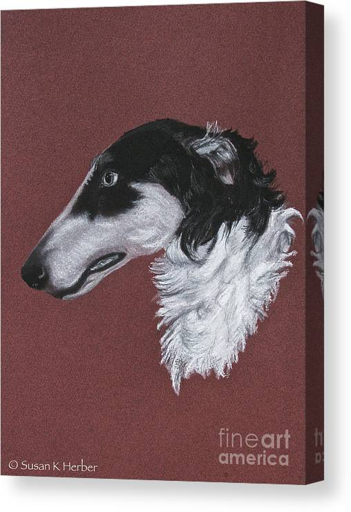 Borzoi Canvas Print featuring the drawing Borzoi by Susan Herber