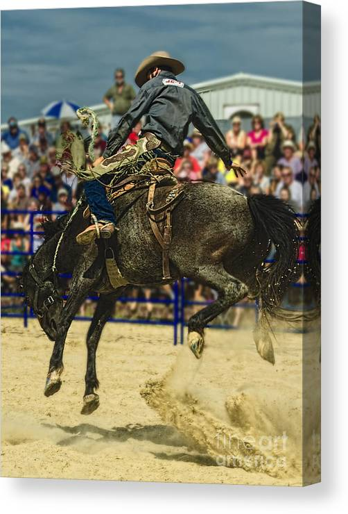 Rodeo Canvas Print featuring the photograph Hanging On by Barry Fawcett