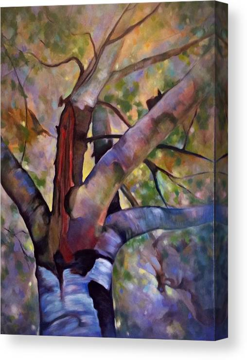 Trees Canvas Print featuring the painting Looking Up by Brenda Loschiavo
