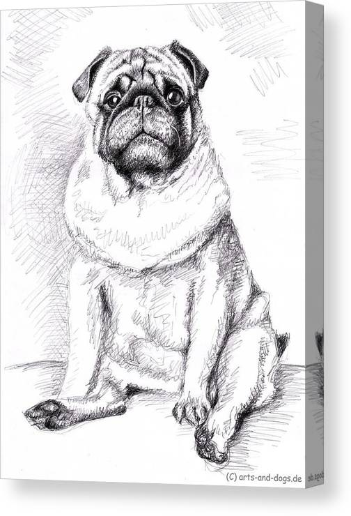 Dog Canvas Print featuring the drawing Pug Anton by Nicole Zeug