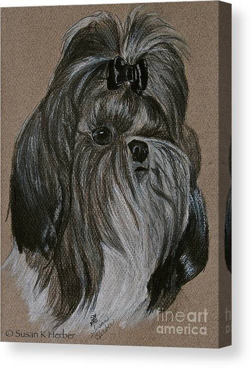 Shih Tzu Canvas Print featuring the drawing Shih Tzu by Susan Herber