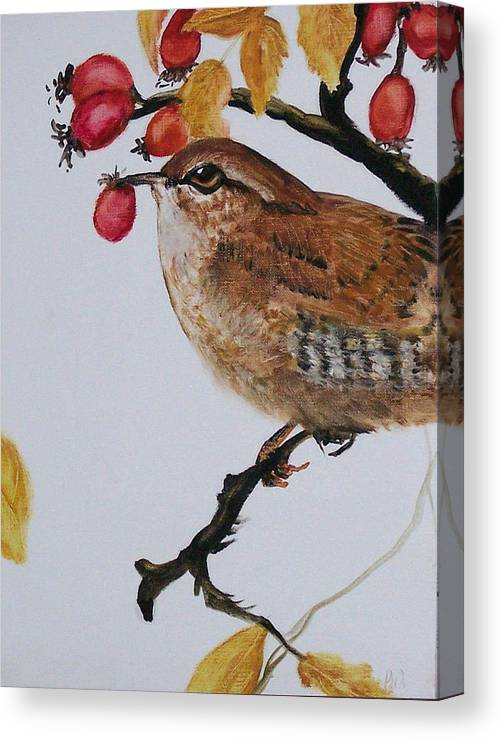 Painting Canvas Print featuring the painting  Wren by Pamela Wilson