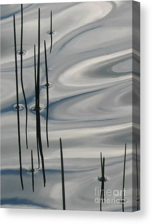 Swirling Canvas Print featuring the photograph Mesmerized by Idaho Scenic Images Linda Lantzy