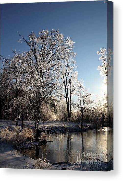 Trees Canvas Print featuring the photograph Trees In Ice Series by Amanda Barcon