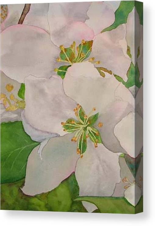 Apple Blossoms Canvas Print featuring the painting Apple Blossoms by Sharon E Allen